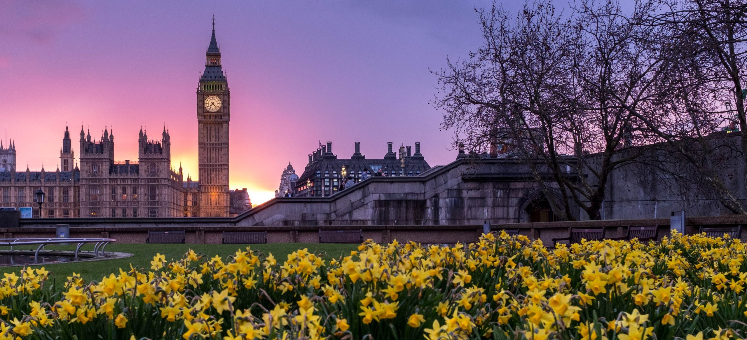 Evolution Financial Services Budget summary 2021